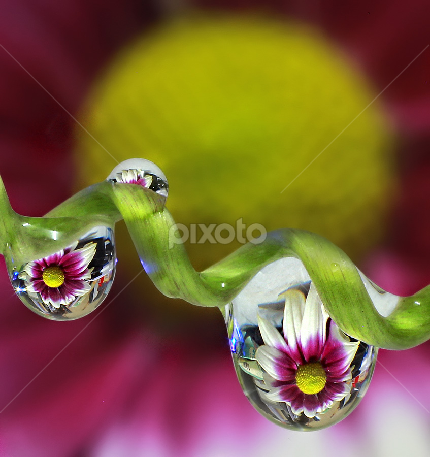 by Yustinus Slamet - Abstract Water Drops & Splashes
