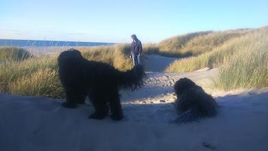 Photo: schon mal ein Blick zum Strand - die Damen warten schon ungeduldig