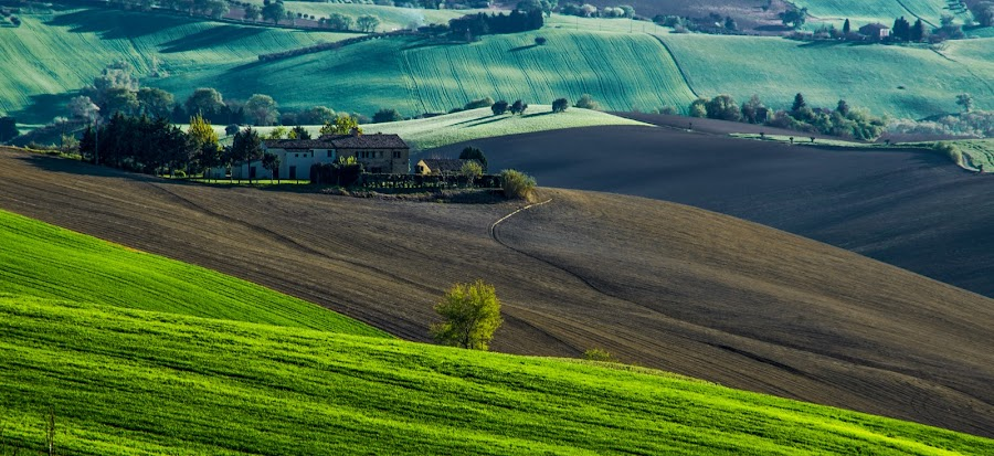 The Italian Hills by Emanuele Zallocco - Landscapes Mountains & Hills ( hills, hill )