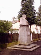 Photo: bustul poetului erou - ion siugariu - baita