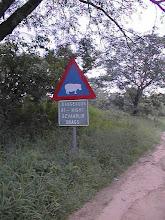 Photo: Varoitus Afrikan vaarallisimmasta eläimestä - virtahevosta