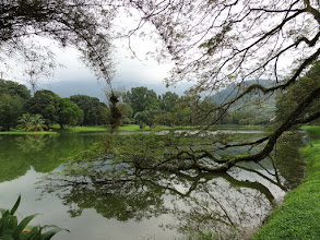 Photo: Taman Tasik Taiping (Taiping Lake Gardens).