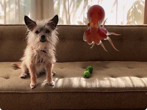 A small dog with big ears sits on a tan couch with a 3D octopus floating in the air next to him.