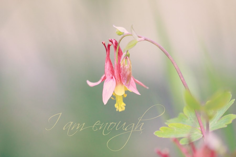 I am Enough by Tammy Drombolis - Typography Captioned Photos ( love, self care, inspriration, columbine, self love )