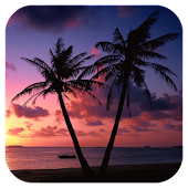 Beach Sunset Live Wallpaper