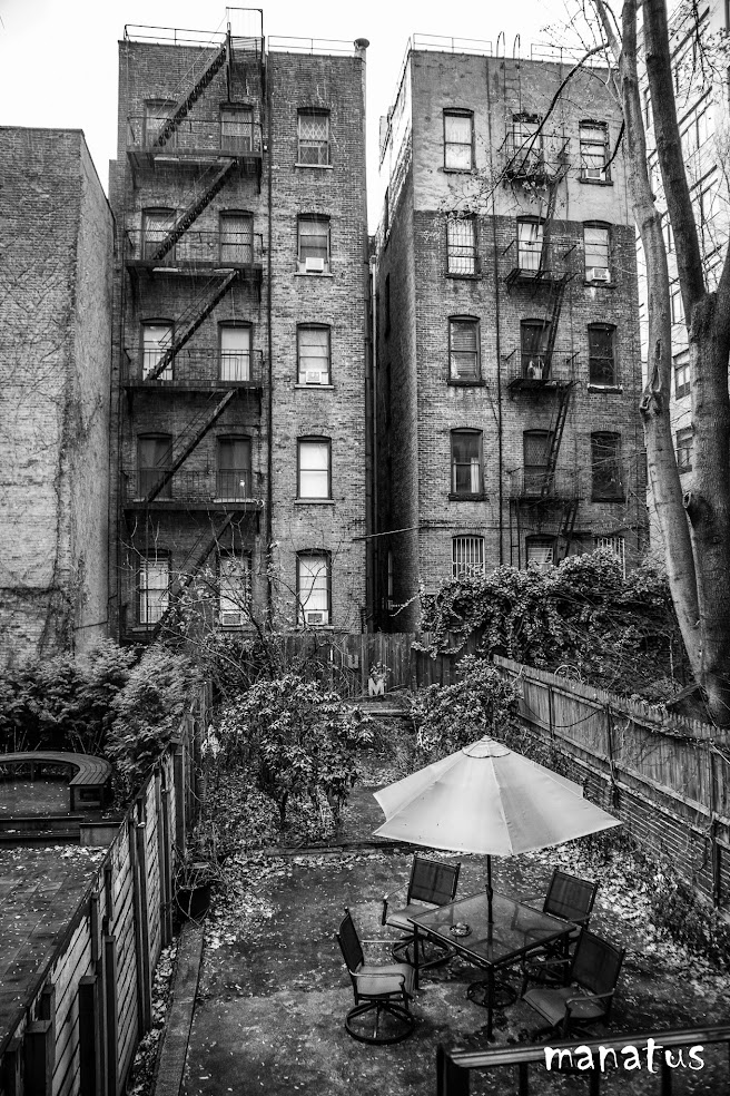 patio en nueva york