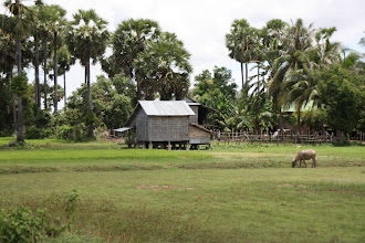 Photo: Year 2 Day 38 -  Typical Stilted House with Bamboo Sides