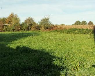 terrain à Saint-Mesmin (85)