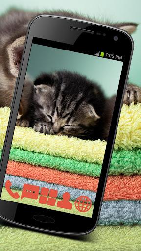 Sleeping Kitties GO ADW APEX