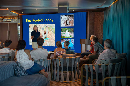 Presentations in the Discovery Lounge aboard Celebrity Flora will get you grounded in the flora and fauna of the Galapagos.