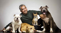 The Dog Whisperer (S5E27)
