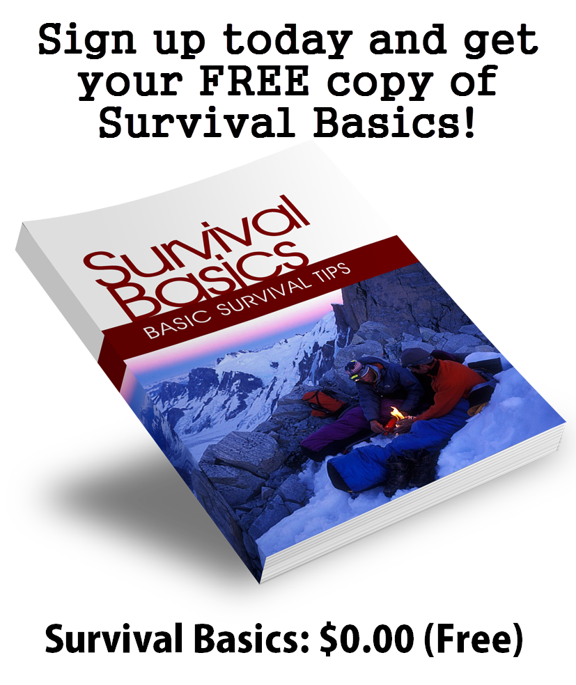 Survival Basics eBook
