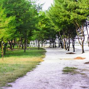 Road to Seribu by Jenry Brady - Landscapes Travel ( pulau payung trevel tumoutou youth landscape )
