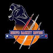 Nuovo Basket Rovigo