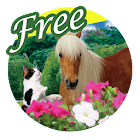 Beautiful Forest Free LWP icon