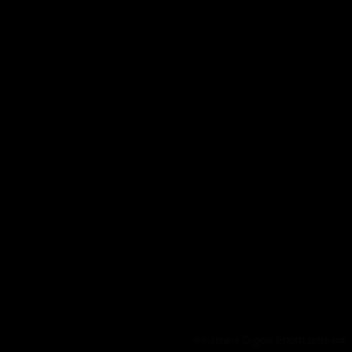 【画像】エトワール _ロゴ