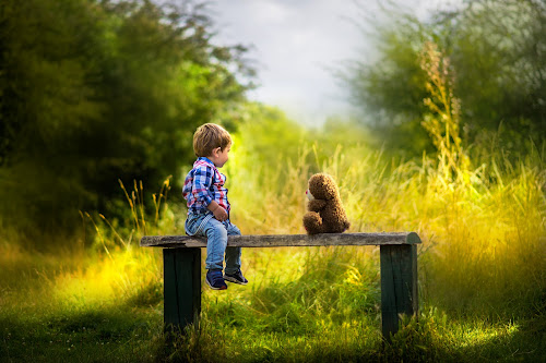 Bench... by Piotr Owczarzak - Babies & Children Children Candids ( teddy bear, park, bench, children, summer, cute, boy, sun )