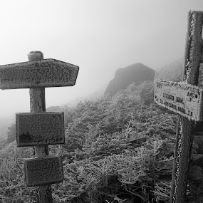 Frosty Signs by Dan Allard - Products & Objects Signs ( signs, pwcwinter, mountains, whiteout, pwcfoulweather, ice, trail, rime,  )