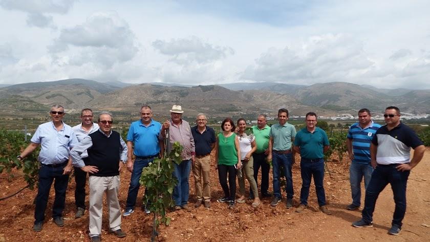 Representantes  y técnicos de la organización de Asaja, junto a los promotores de Bodegas y Viñedos Laujar en una visita a los viñedos de la zona.