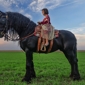 The princess by Bogdan Negoita - Babies & Children Child Portraits ( girl, the princess, horse,  )