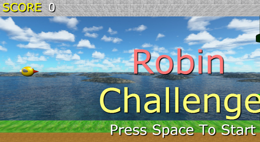 Robin Challenge