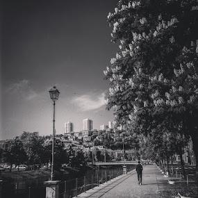 Fiume by Goran Grudić - Instagram & Mobile iPhone ( croatia, rjecina, fiume, rijeka, kvarner )