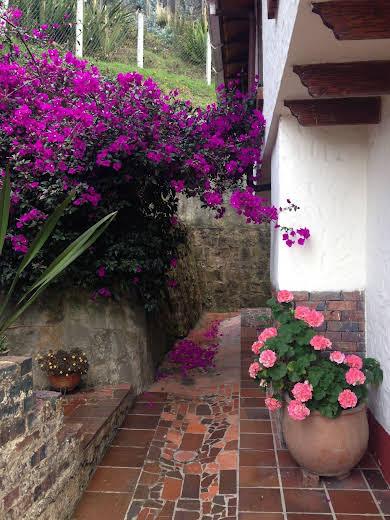 Montemadero Casa