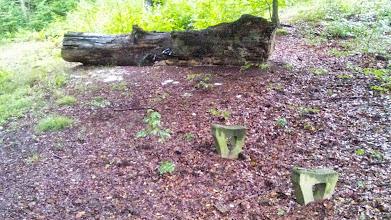 Photo: Bänkekrise in Hagen - die wievielte? Bei dieser Bank (unweit vom Mühlenbrinkbach) muß man sich den Sitz dazudenken oder darf alternativ den Baumstamm dahinter benutzen.