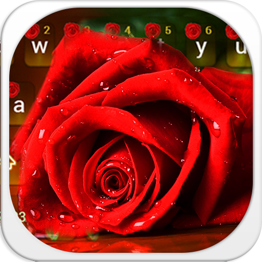 Red rose keyboard theme