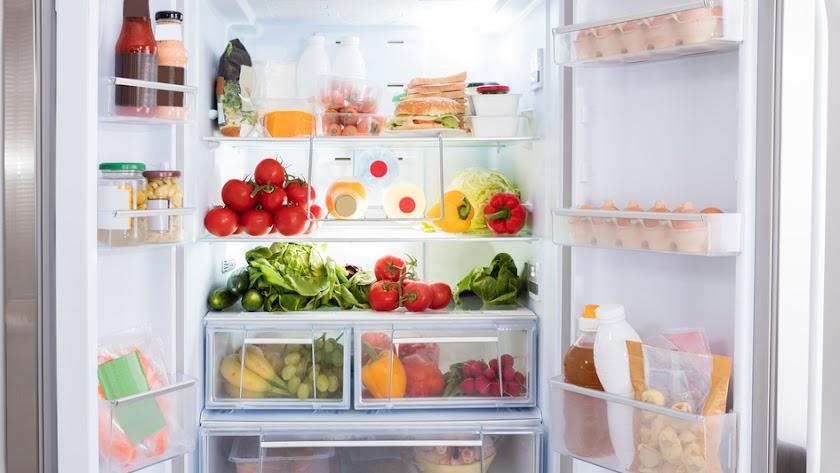 El frigorífico, la mayor amenaza para el recibo de la luz