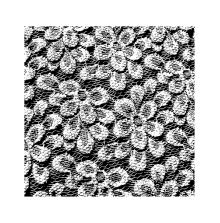 Wendy Vecchi Background Stamp - Floral Lace