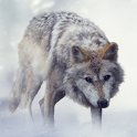 Wolf Sounds icon