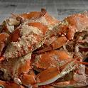 Delaware Cuisine: Recipes icon