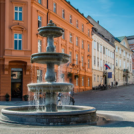 by Mario Horvat - City,  Street & Park  Fountains ( water, touristic, slovenia, fountain, buildings, ljubljana, travel, square )
