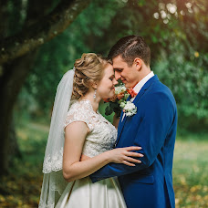 Wedding photographer Sergey Danilin (DanilinFoto). Photo of 11.11.2017