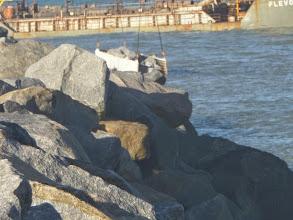 Photo: Obras no porto do Açu