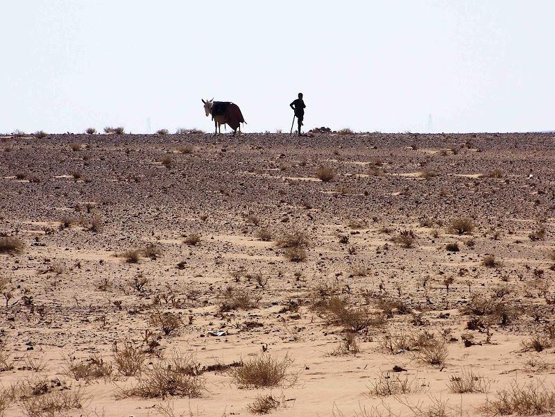 Aride terre di antonioromei