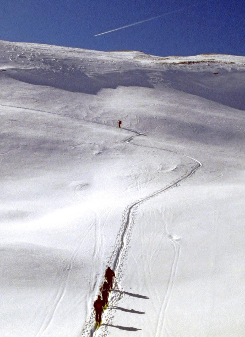 Ombre sulla neve di benny48