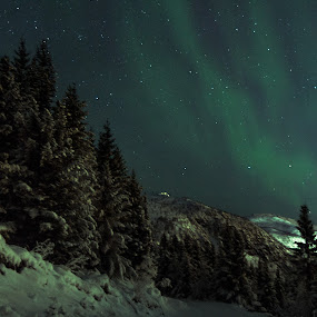 Nordlys over Hadselåsen by Thomas Ebeltoft - Landscapes Mountains & Hills ( canon, aurora borealis, northern lights, vesterålen, norway )