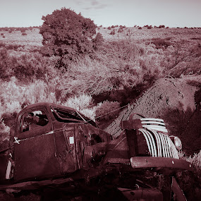 Vintage in the Dirt by Mathan Tenney - Black & White Objects & Still Life ( old, desert, pickup, truck, black and white, vintage, rusty, deserted, northern arizona, little colorado, arizona, high desert, classic, abandoned,  )