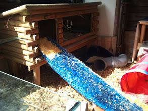 Photo: Der neue, alte Kleintierstall. Muss bei Gelegenheit noch verschönert werden.