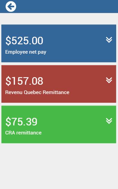 Payment evolution payroll calculator