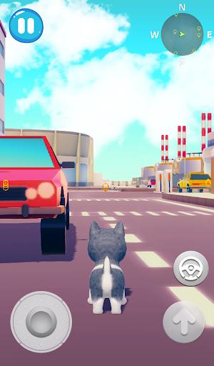 Talking Husky Dog 2.25 screenshots 19
