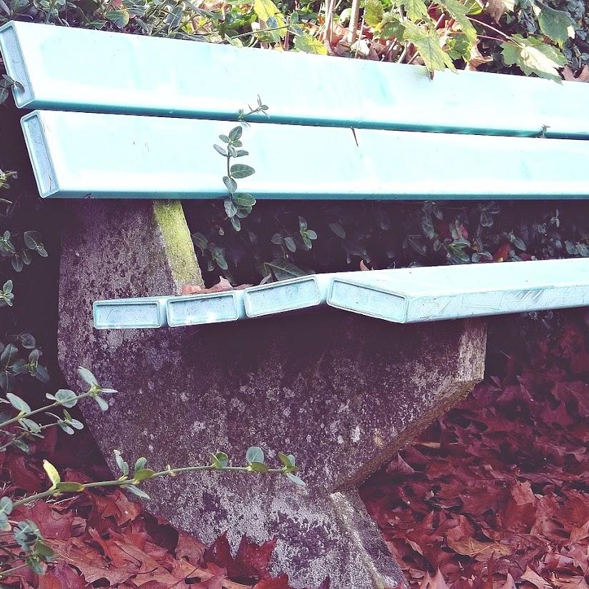 Jardin_otoño