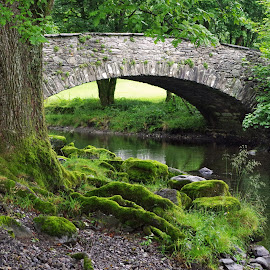 Country Bridge by Ingrid Anderson-Riley - Buildings & Architecture Bridges & Suspended Structures (  )