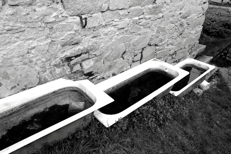 Vasche di gfg