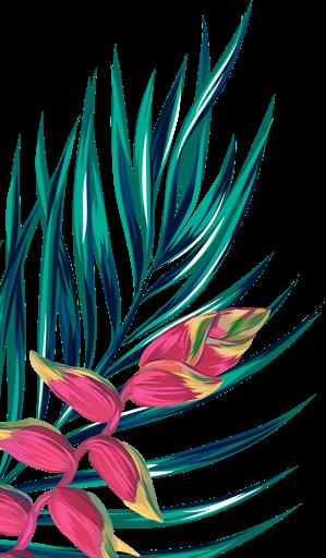 Feuille et fleur exotique HAGL (2)