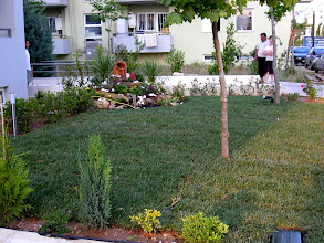 Photo: The Athens Olympic Village - Garden - Κήπος 4