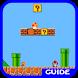 Guide (for Mario)