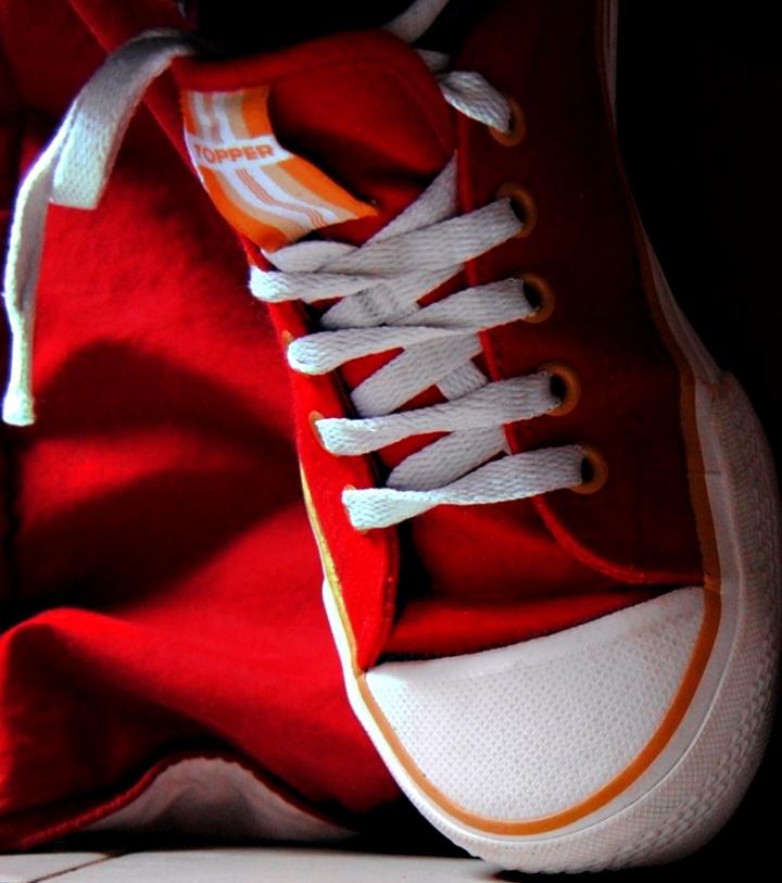 Red shoe di regyns